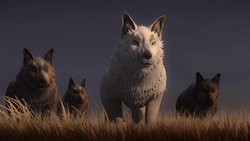 Loth-wolf pack WaaD