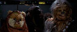 Widdle Chewie