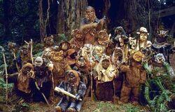 Chewie Ewoks