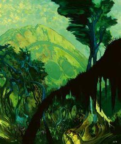 Caamas jungle