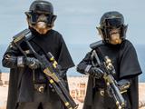 Hylobon Enforcers