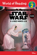 A Leader named Leia slightly diferent