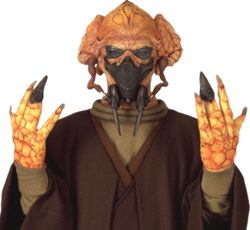 Plo Koon goggles and mask