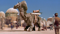 Ronto in Mos Eisley