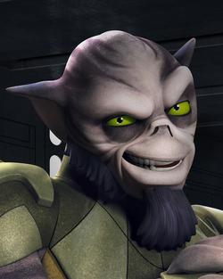 Zeb profilo