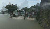 Kashyyyk trees