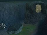 Giant Bark Mite Cave