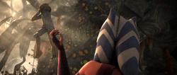 Ahsoka Force choke Trandoshan