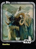 Bantha - Creature - Base Series 1