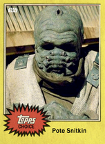 Pote Snitkin - Topps Choice 2