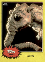 Hoover - Topps Choice 2