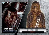 ChewbaccaSmugglerANH-56-Evolution-front