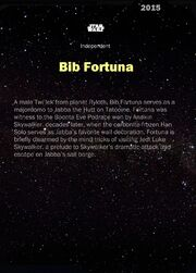 BibFortuna-2015-Back