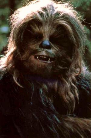 File:Chewbacca1.jpg