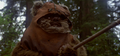 Wicket.png