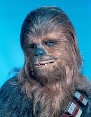 Chewbacca 10550
