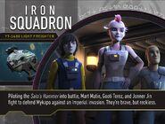 Iron Squadron Profile