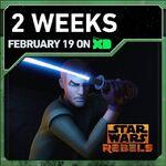 2 Weeks 2