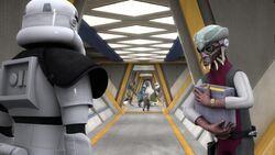Hondo Stormtrooper
