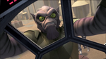 Angry Zeb