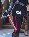 Seventh Sister at Disney Parks 14