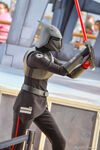 Seventh Sister at Disney Parks 20