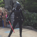 Seventh Sister at Disney Parks 3