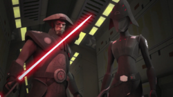 Seventh Sister and Fifth Brother