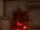 Plague Heart