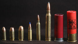 9x19mm .40SW .45ACP 5.7x28mm 5.56x45mm .300Winchester 2.75-12ga 3-12ga