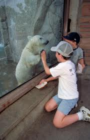File:People at a zoo.jpg