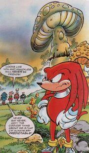 Mushroomvalley
