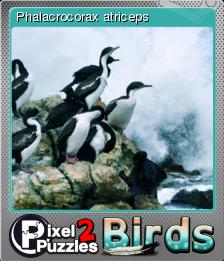 Pixel Puzzles 2 Birds Foil 4