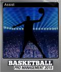 Basketball Pro Management 2015 Foil 3