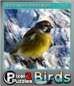Pixel Puzzles 2 Birds Foil 6
