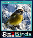 Pixel Puzzles 2 Birds Card 6