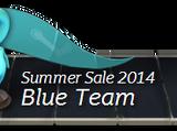 Steam Summer Adventure 2014 Teams