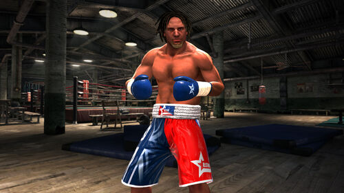 Real Boxing Artwork 1