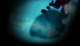 Element4l Background Element4l - Heart