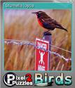 Pixel Puzzles 2 Birds Foil 2