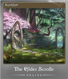 The Elder Scrolls Online Foil 1