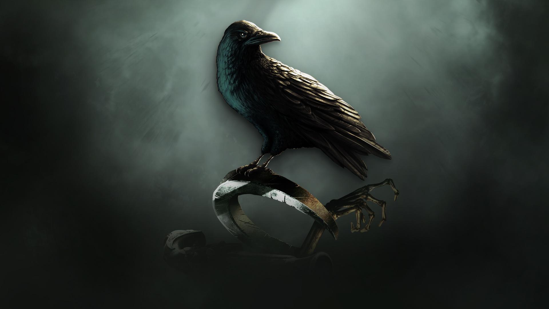 M Letter Logo Wallpaper Hd Raven's Cry - Raven Bi...