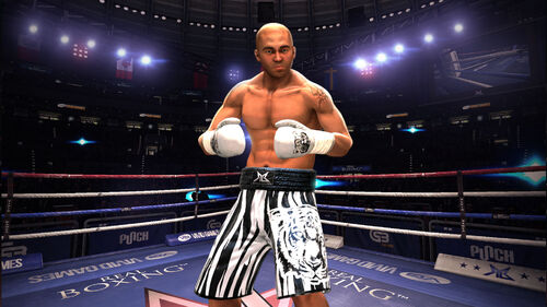 Real Boxing Artwork 7