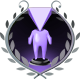 Steam Summer Adventure 2014 Badge Purple Team