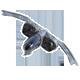Echelon Wind Warriors Badge 1