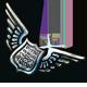 Risky Rescue Badge 5