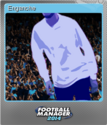 Football Manager 2014 Foil 3