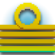 Wake Badge 5