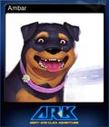 AR-K Card 3