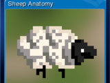 Wallpaper Engine - Sheep Anatomy